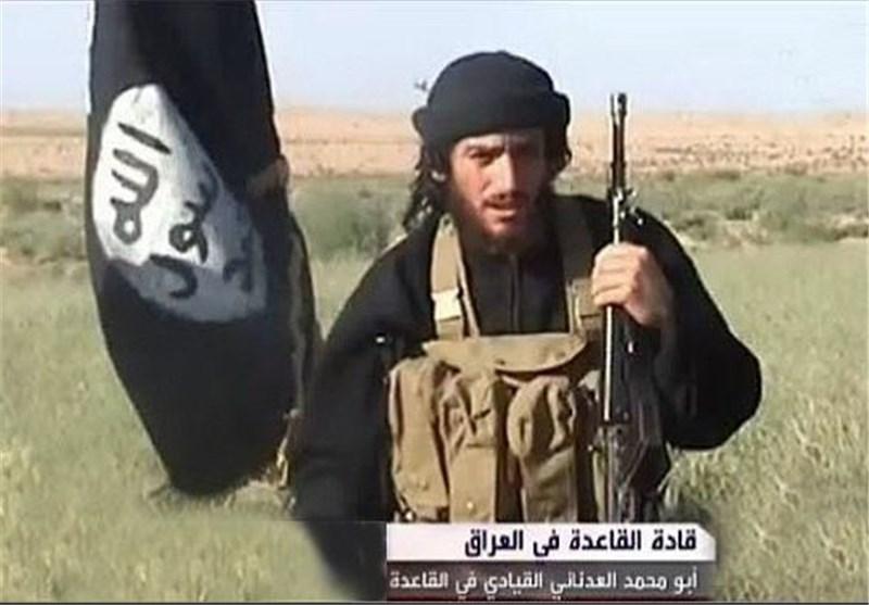 مقامهای آمریکایی: ما سخنگوی داعش را کشتیم؛ روسها شوخی میکنند!