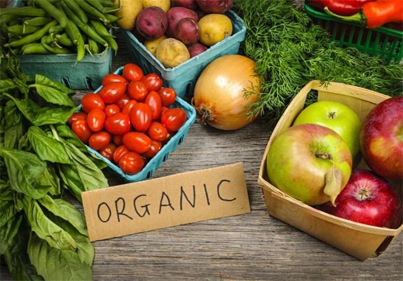 تولید محصول ارگانیک در کشور دروغ است/سالم بودن ۷۰ درصد تولیدات کشاورزی
