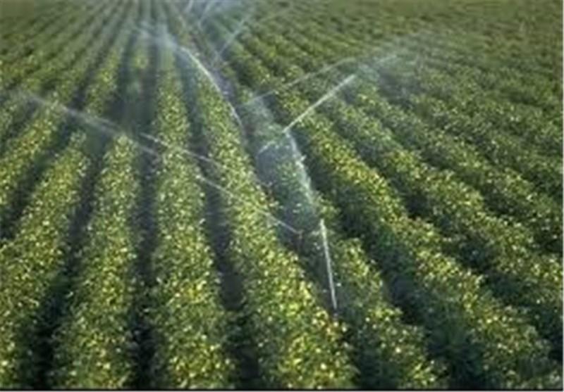 اتاق ترویج کشاورزی در استان اصفهان تشکیل شود