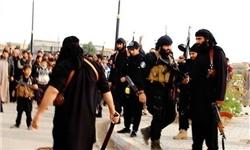 ایران با سیاست پیچیده تروریسم ستیزی، موفق به حفظ امنیت مقابل داعش شده است