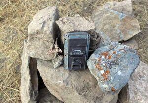 رصد پارک ملی تندوره توسط دوربینهای بدون مجوز +عکس