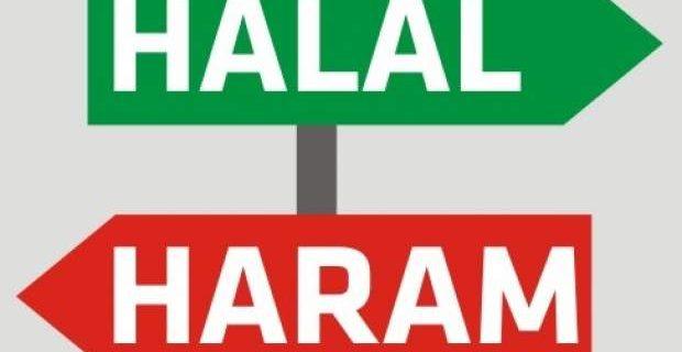 فروش محصولات حرام دریایی به قیمت دانهای ۲۵۰ هزار تومان!